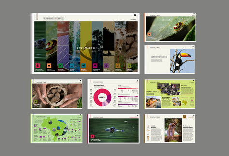 Projeto gráfico anuário WWF Brasil