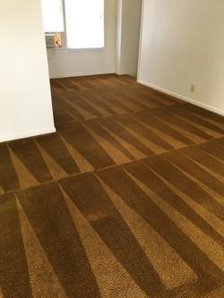 Carpet27