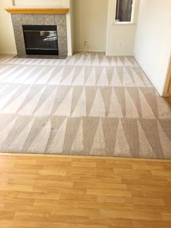 Carpet10