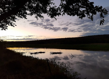 Rompimento da barragem da Vale em Brumadinho: impactos socioambientais na bacia do rio Paraopeba