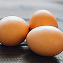 Organic Fried Egg