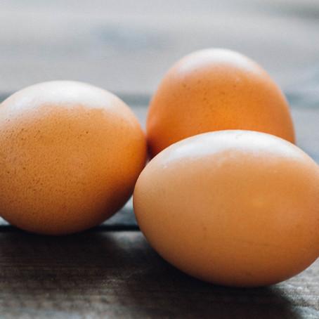 卵黄の湧きだすパワーとコリン