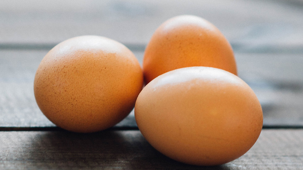Bielefelder hatching eggs - 1 dozen / Express shipping l included