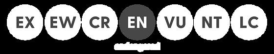 Animal Conservation Status Icons (Websit