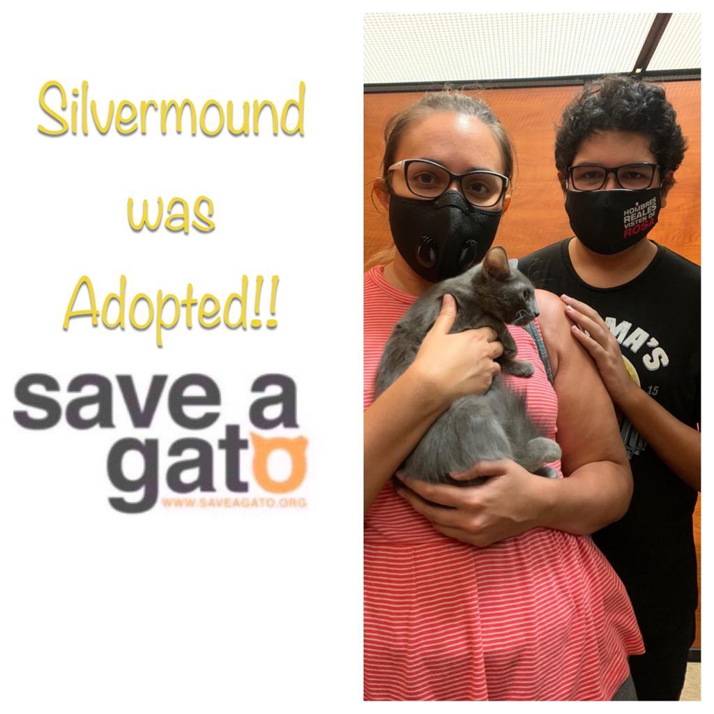Silvermound