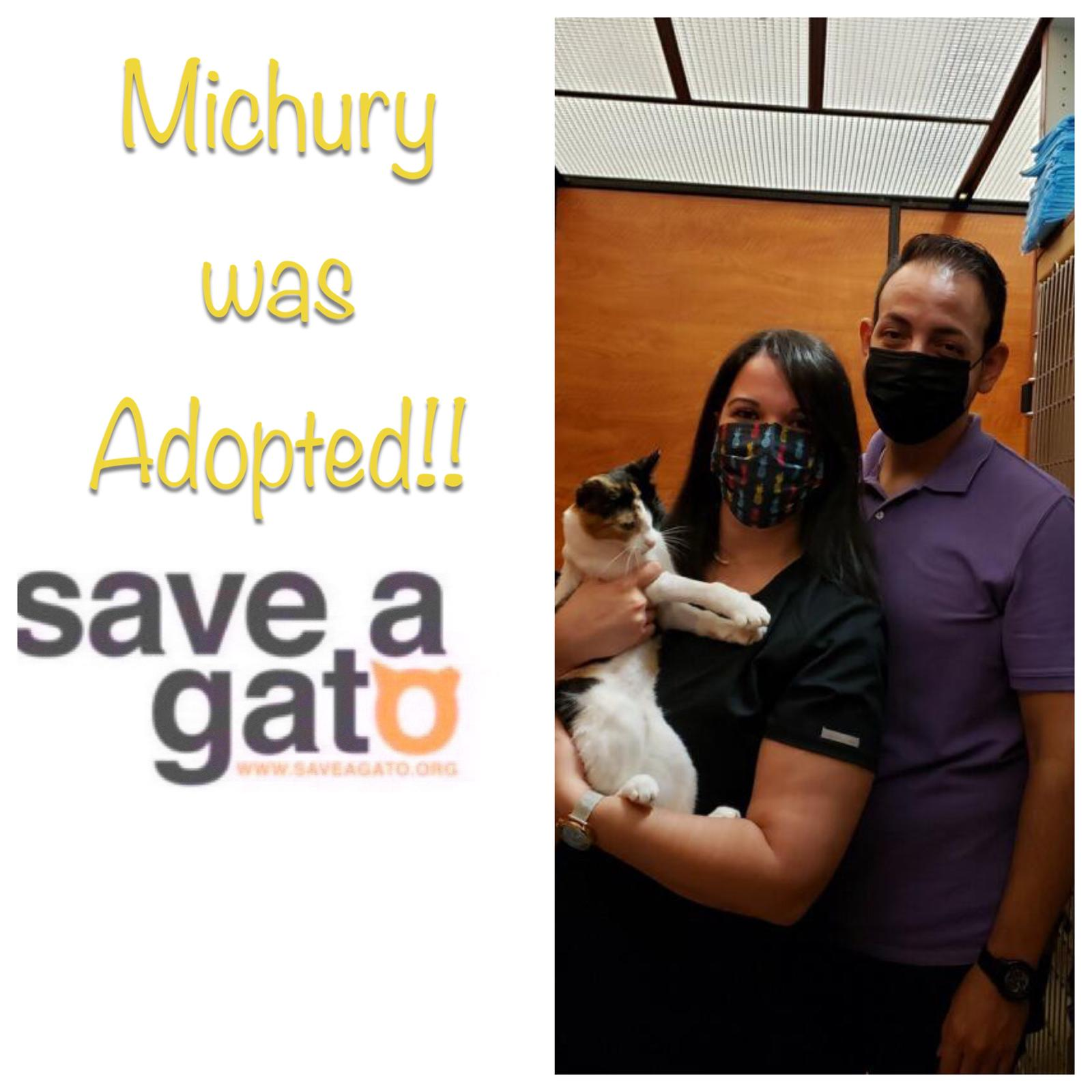 Michury