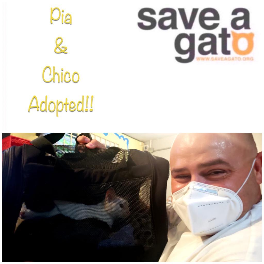 Pia & Chico