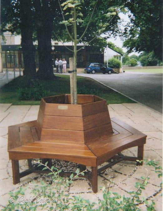 Tree seat at Monkton School Bath