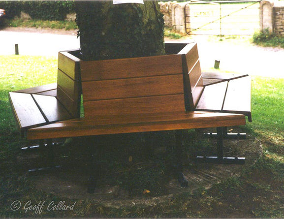 Tree seat at Norton St Phillips