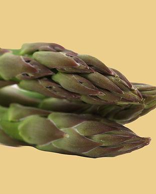 macro-photo-of-asparagus-42227_edited_ed
