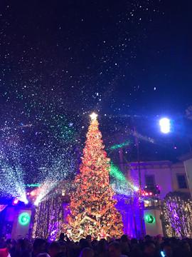 2016-12-01 18.33.54.jpg