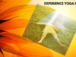 A Glimpse Into Yoga Nidra Consciousness