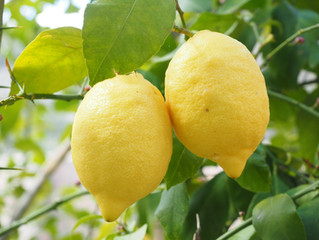 Lemon Power!