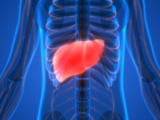 Give Your Liver Some Love