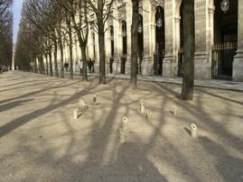 Palais_Royal 18-02-2008_07.jpg