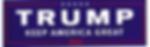 TrumpBumperStickerKeepAmericaGreat2020-3