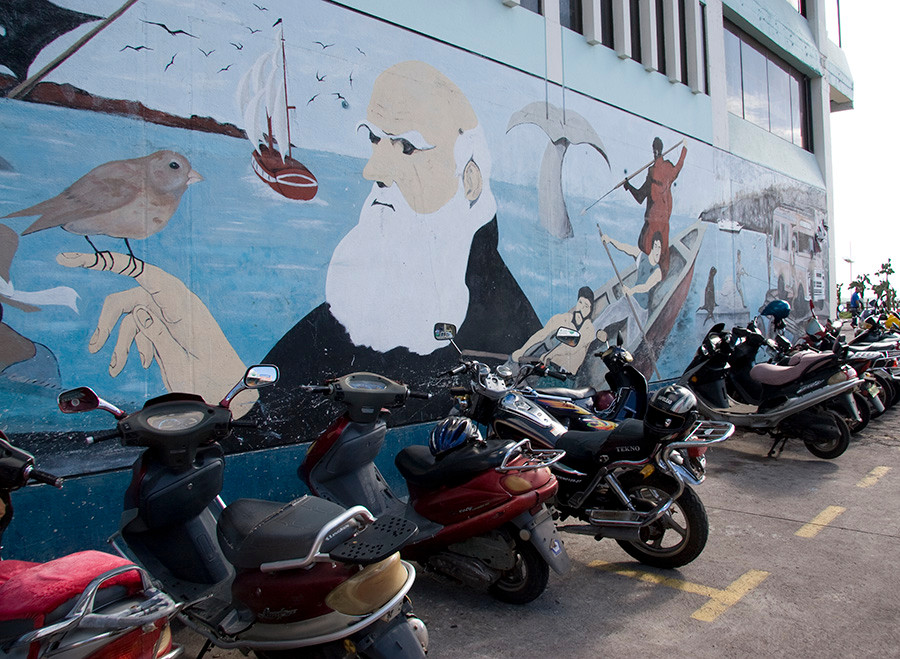 Darwin mural at the dock in Puerto Ayora. Photo by Neil Caudle