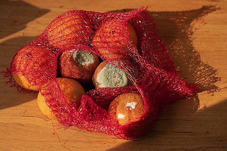 fruits-5089628_640.jpg