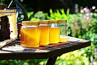 honey-352205_640.jpg