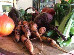 Farm Vegetables.jpg