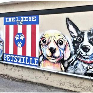 City Pets East Nashville