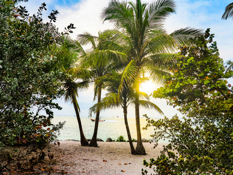 Retirement and what people wish they had known before moving to Florida
