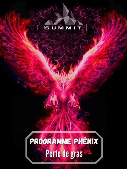 Programme PHENIX perte de gras