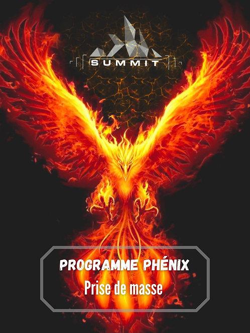 Programme PHENIX prise de masse