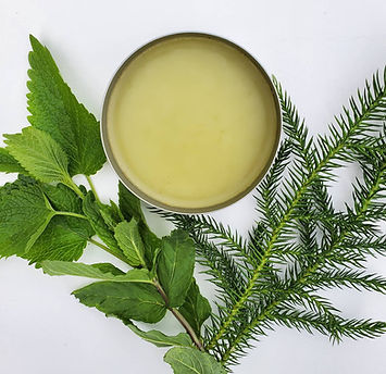 Pine Mint salve, natural skincare, beauty products