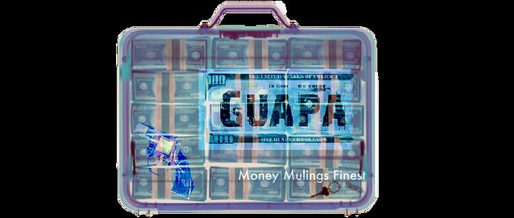 GUAPA.png