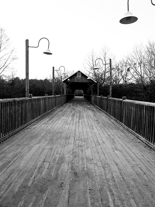 Black & white covered bridge