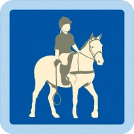 intor to polocrosse badge.jpg