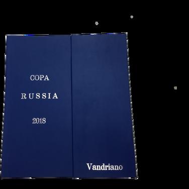 Copa da Russia 2018