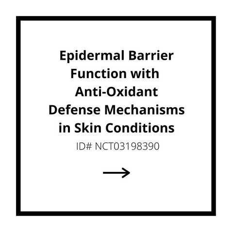 Epidermal Barrier Function with Anti-Oxidant Defense Mechanisms in Skin Conditions