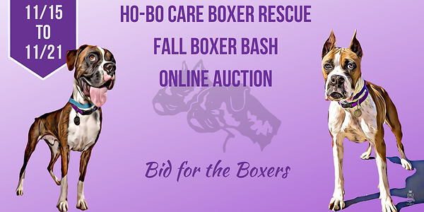 Copy of Ho-Bo Care Boxer Rescue.png