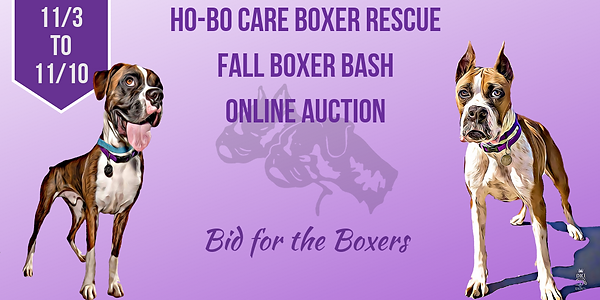 Ho-Bo Care Boxer Rescue.png