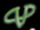 logo%2520cvp_edited_edited.png