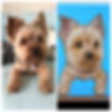 iap_640x640.1317805591_mcbsdznz.jpg