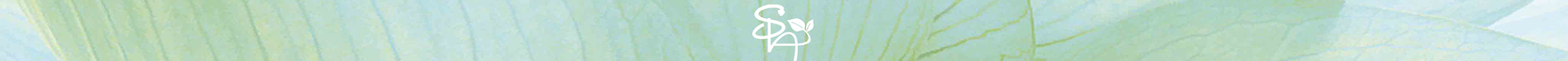 Banner Footer SPA website (1).png