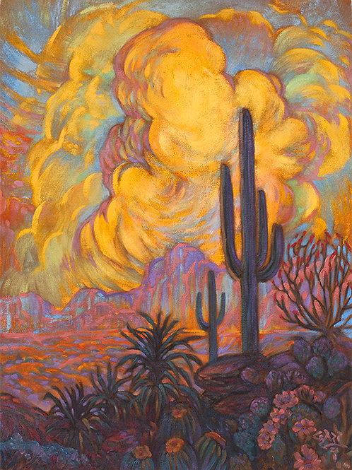 Cactus and Sunset Clouds ll