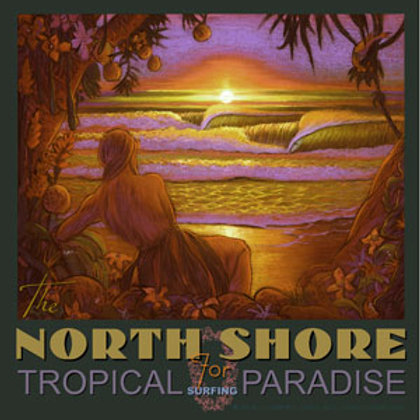 North Shore Hawaii Vintage Surf Art Poster