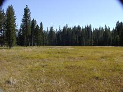 SL-Aug 2007 015