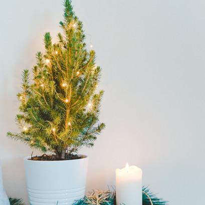 Christmas spirit on a budget.