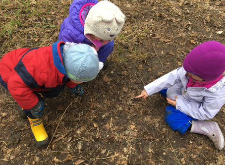 A Rumination on Humble Mud