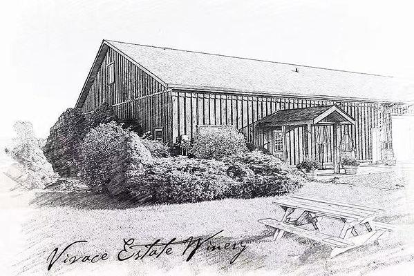 Vivace Estate Winery Sketch