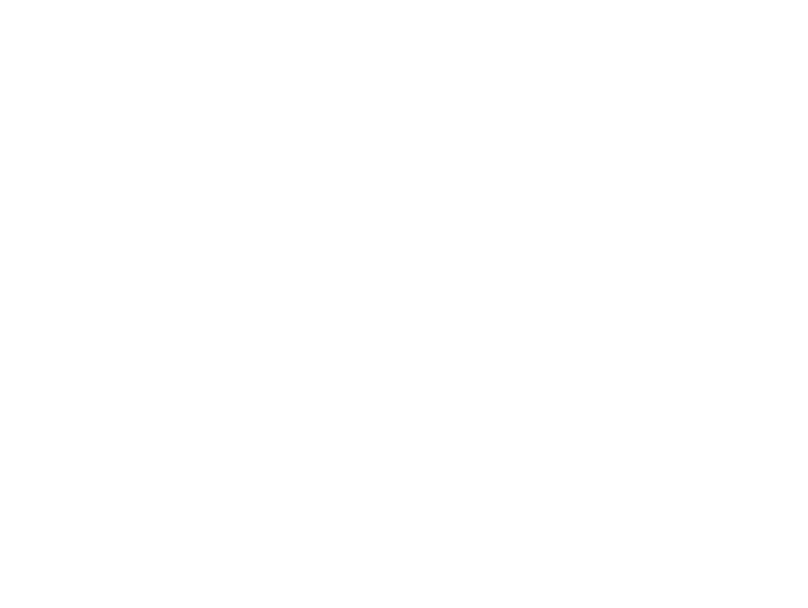 Magnolia Flower-white.png