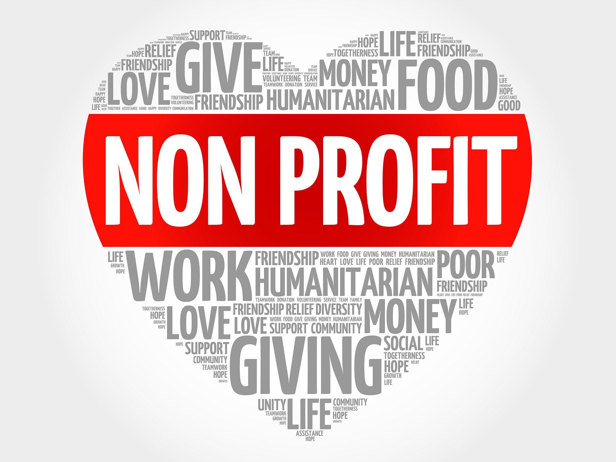 Non-Profit Start Up
