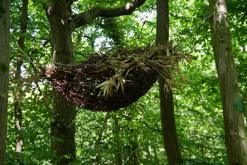 SIDE Nest MFrench.jpeg