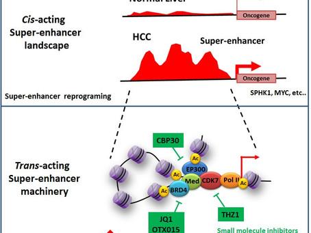 Super-enhancer landscape in liver cancer