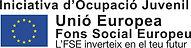 logotipo FSE.jpg